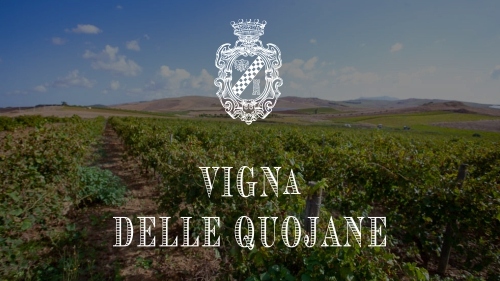 vigna_quojane2